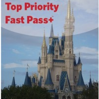 Disney Magic Kingdom Top Priority Fast Pass+