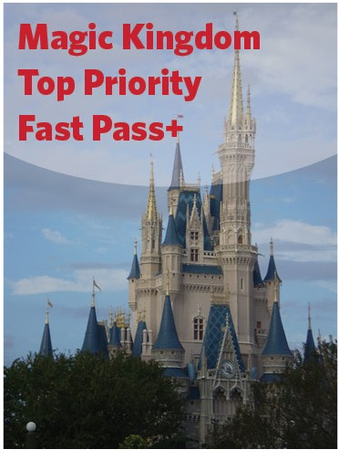 Top Priority Fast Pass for MK